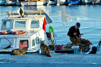 Fisherman in Canakkale
